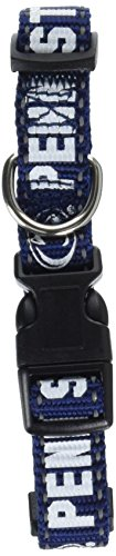 Pet Goods NCAA Penn State Nittany Lions Dog Collar, Small