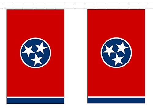 Tennessee String (State of Tennessee String 30 Flag Polyester Material Bunting - 9m (30') Long)