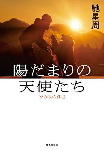 陽だまりの天使たち: ソウルメイトII (集英社文庫)