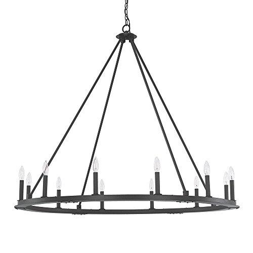 Light Chandelier Capital Lighting - Capital Lighting 4912BI-000 12 Light Chandelier