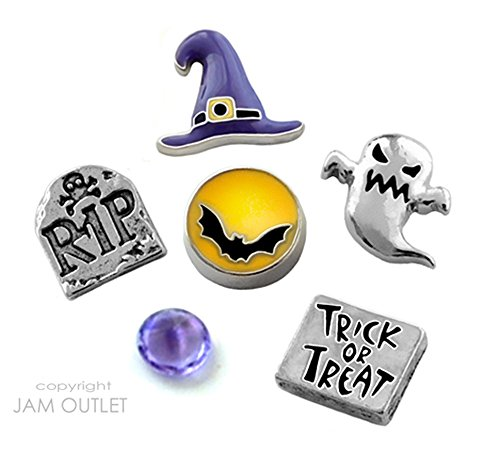 6 Pc Halloween WITCH Floating Charm Set - fits all Origami and Generic Glass (Origami De Halloween)