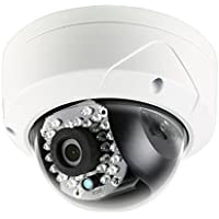 LTS Platinum 2MP 1080p Vandal IR Mini Dome IP Camera: 2.8mm, 100 ft Infrared, IP66, PoE/12v DC, ICR, DWDR, VCA, 3-Axis, Onvif, Local Storage, 3yr