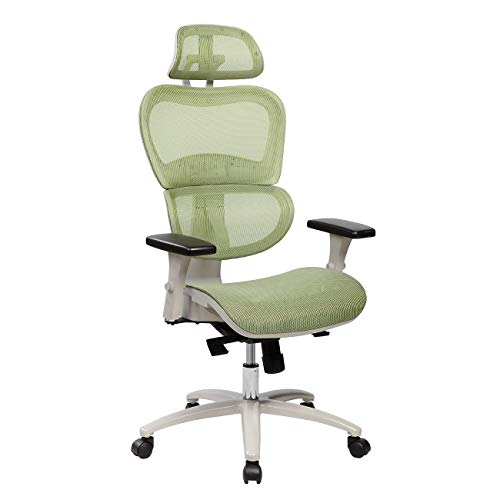 Techni Mobili RTA-5004-GRN High Back Mesh Office Executive Chair with Neck Support, Green,