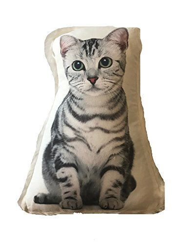 Cat Themed Accent Pillow with Fur Trim, Silver Tabby Cat 15