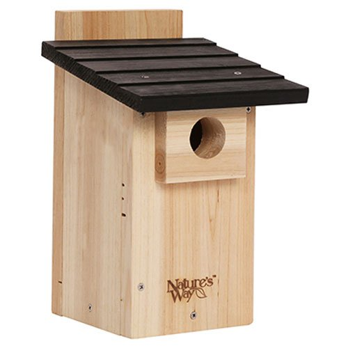 Bird Cedar House (Nature's Way Bird Products CWH4 Cedar Bluebird Viewing House)
