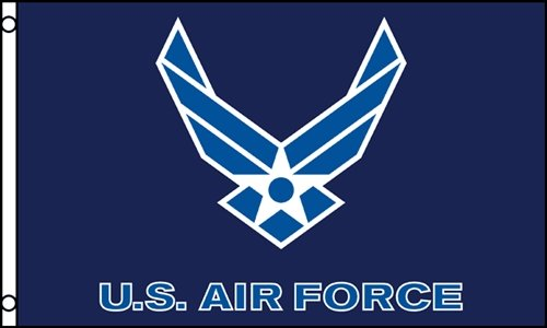 3'x5' US AIR Force Blue Wings Polyester Flags ()