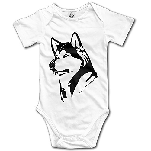 Price comparison product image OOKOO Baby's University Of Washington Huskies Bodysuits White 24 Months