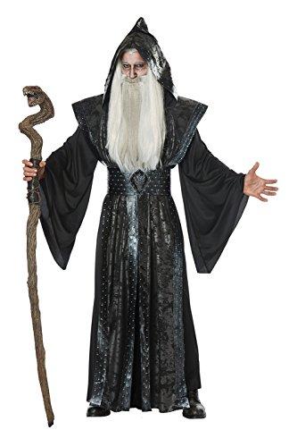 Dark Witch Costumes (California Costumes Mens Dark Wizard Costume Large/X-Large)