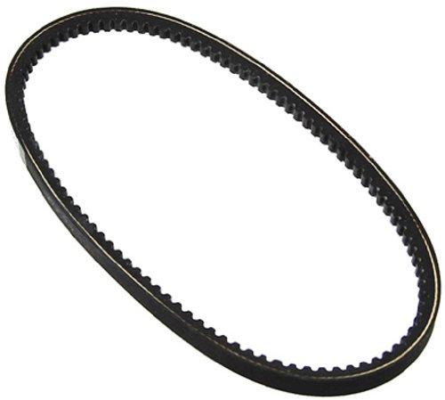 (Auto 7 300-0040 Power Steering Pump Belt)