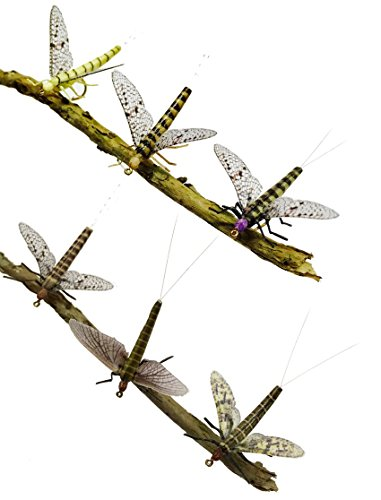 Cabin River Flies Synth Mayfly Pack of 12 Flies in 6 Patterns & 2 Sizes (Western & Eastern Green Drake, Red Quill Hendrickson, Light Cahill, March Brown, Gray Fox), Sizes 12 & 14 (Body Quill)