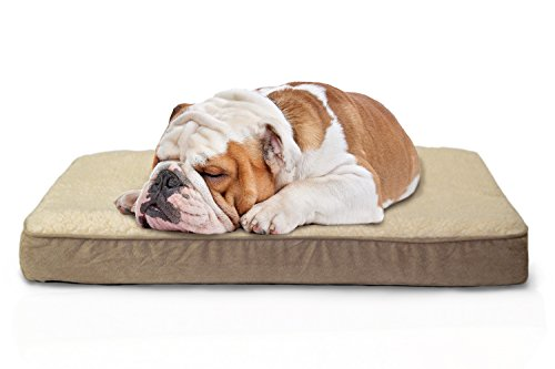 Furhaven Pet Sherpa and Suede Memory Foam Mat Dog Bed, Mediu
