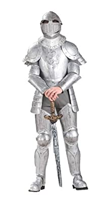 Forum Knight In Shining Armor Complete Costume