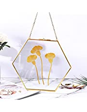 Photo Frame Hexagon Metal Geometric Photo Frame with Chain Glass Plant Specimen Clip Wall Mount Photo Clip Photo Wall 150 * 130 * 6mm