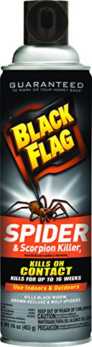 Black Flag Spider And Scorpion Killer Aerosol Spray  16 Ounce  12 Pack