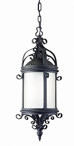 Troy Lighting Pamplona 4-Light Outdoor Pendant - Old Bronze Finish with Clear Seeded Glass by (Old Bronze Troy Lighting)