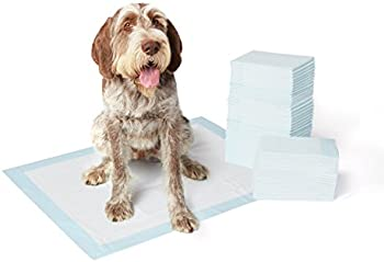 AmazonBasics Pet Training Pads Extra-Large