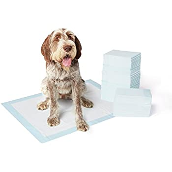 AmazonBasics Pet Training and Puppy Pads, Extra-Large - 60 Count
