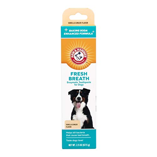 Arm & Hammer Fresh Breth Enzymatic toothpaste for Dogs,Vanilla Ginger, 2.5 oz (Pack of 2) ()