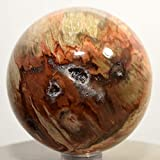 56mm Multicolor Petrified Wood Sphere Natural Druzy Crystal Polished Fossil Ball Ancient Fossilized Tree Quartz Mineral Stone - Madagascar + Plastic Stand