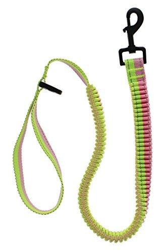 Elite Pet Bungee Sports Leash (Pink/Green)
