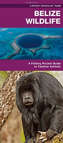 Belize Wildlife: An Introduction to Familiar Species (Pocket Naturalist Guide Series)