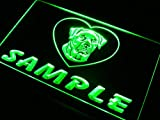 ADVPRO Name Personalized Custom Rottweiler Dog House Home Neon Sign Green 16'' x 12'' st4s43-vf-tm-g