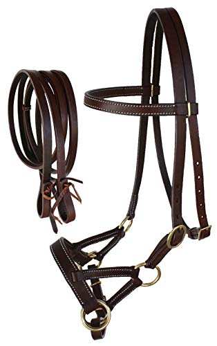 CHALLENGER Horse Western Leather Tack Bitless Sidepull Bridle w/Reins Brown 77RT03BR-F