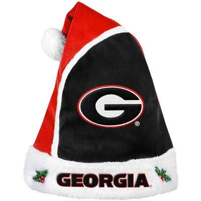 Georgia 2015 Basic Santa Hat