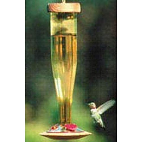 Schrodt Gold Lantern Hummingbird Bird Feeder - Gold Hummingbird Feeder