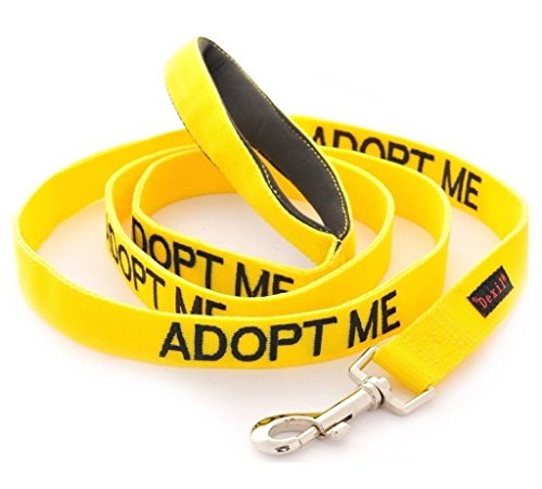 dex-il Colour Coded Dog Warning Awareness Harnesses Leads Collars Coats – ADOPT ME (Standard Lead 120cm)
