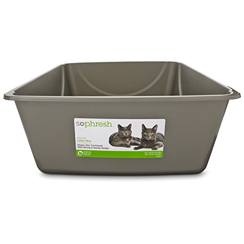 So Phresh Jumbo Open Litter Box, 22'' L X 16.5'' W X 6.5'' H, Assorted by So Phresh