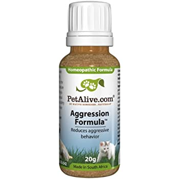 Meds With Therapy Calm Aggression In >> Amazon Com Petalive Aggression Formula For Stressed Aggressive