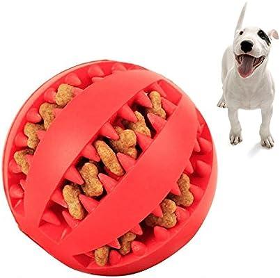 Pelota de goma para masticar de perro, juguete de limpieza de ...