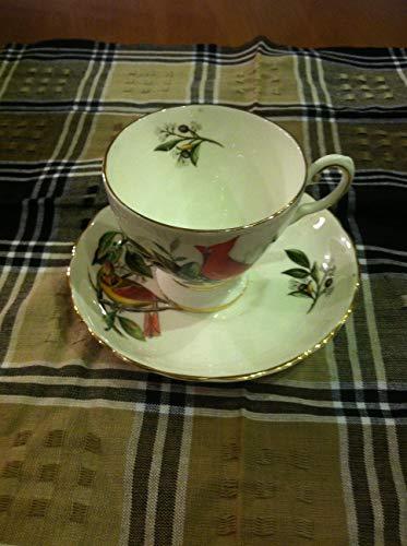 Vintage Royal Chelsea Bone China Tea cup & Saucer Audubon Birds Cardinal