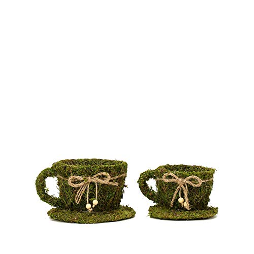 (BalsaCircle 2 Green Natural Moss Teacups Planter Boxes with Ribbons Centerpieces Party Wedding Home Decorations Supplies)