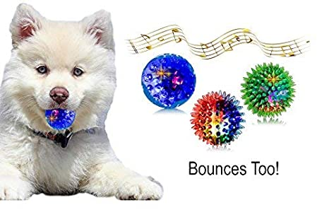 Dog Cat Funny Muti Animals Toy Funny Squeak Toys Animals Pet Self Interactive Toys For Puppy Kitten Pets Training Products Special Summer Sale Pet Products Dog Toys