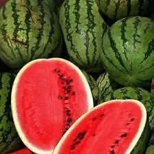 20pcs Orange Watermelon Seeds Heirloom Citrullus Lanatus Home Garden Fruit Seeds Plant DIY