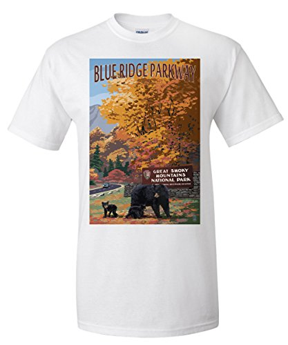 Park Entrance (Blue Ridge Parkway - Great Smokey Mountains Park Entrance and Bear Family (White T-Shirt X-Large))