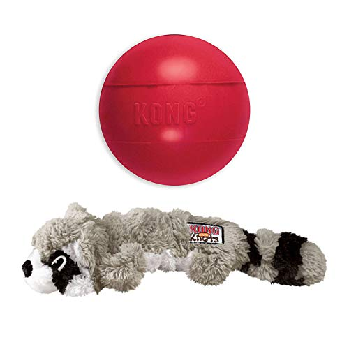 Srunch Knots Raccoon & KONG Ball w/Hole – Md/Lg