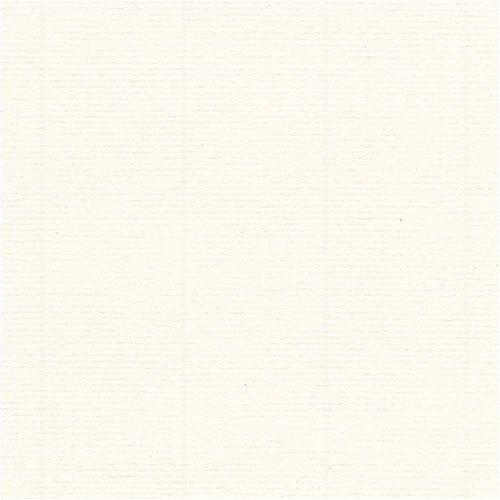 Fox River Select 25 Writing Warm White Laid 24# #10 Envelope 500/pack by FoxRiver