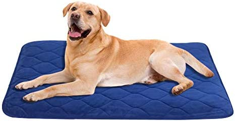 B G Dog Mat Washable and Easy Clean, Anti-Slip Matress Resistance Durable Velvet Dog Bed, Dog Pad