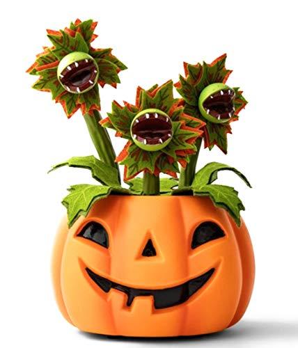Halloween Best Vines (Hyde and Eek Animated Pumpkin with Dancing Singing Vines Halloween)