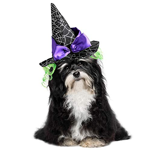 Legendog Cat Costume Halloween Pet Hat Decorative Funny Hat Puppy Dog Party Hat Witch Cosplay (Halloween Hat)