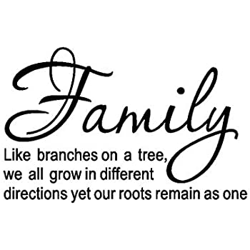 Amazoncom Luckkyy Family Like Branches On A Tree Vinyl Wall Decals