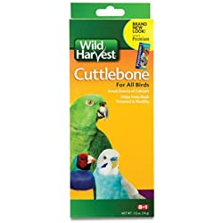United Pet Group C8262 Pet Bird Cuttlebone