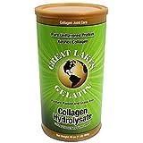 Great Lakes Gelatin Collagen Hydrolysate (Kosher), 16-Ounce, 454-Gram