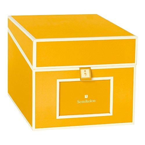 Albums Dvd Photo (Semikolon Multimedia CD/DVD/Photo Storage Box, Sun Yellow (31801))