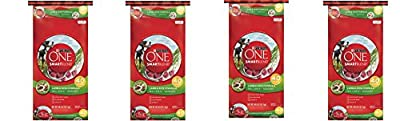 Purina ONE SmartBlend Dry Dog Food, Lamb & Rice Formula ZTVAyy, 4Pack (40 lb. Bag)