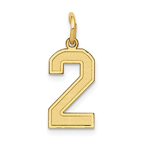 Satin Number 2 Charm - 14K Yellow Gold Small Satin Number 2 Charm