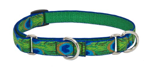 "LupinePet Originals 3/4"" Tail Feathers 10-14"" Martingale Collar for Small Dogs"
